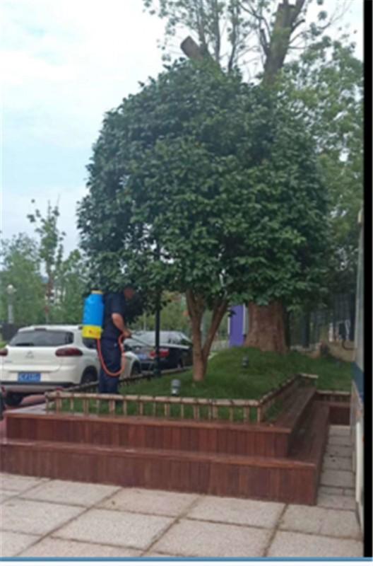 公共區域樹木白蟻防治